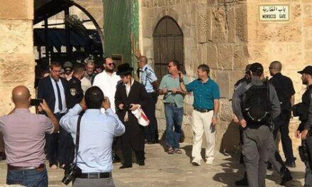 884 colons ont profané les cours d'Al-Aqsa la semaine dernière