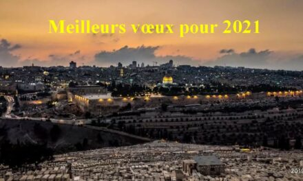 Bonne et heureuse année à toutes et tous