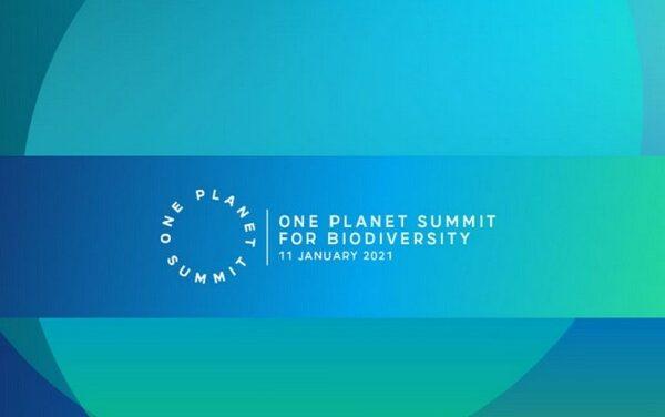 OnePlanetSummit: protéger la biodiversité ou brancher la finance sur la nature?