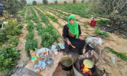 Femme de mon pays, femme palestinienne