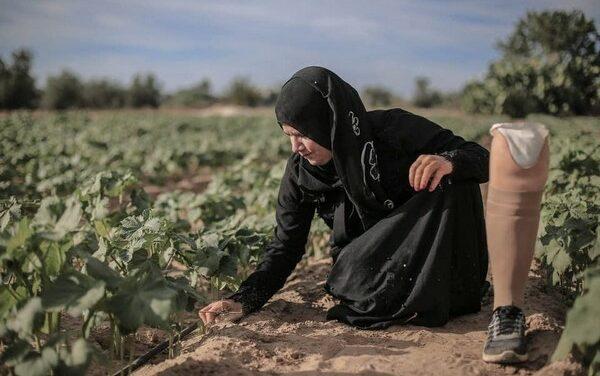 Femme amputée de Gaza – Femme digne