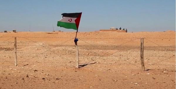 Sahara occidental : pendant que Trump écrase le droit, l'Europe regarde ailleurs