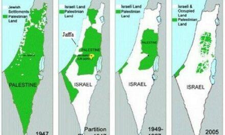 Entre les politiques stéphanois et l'opinion publique : la question du peuple Palestinien