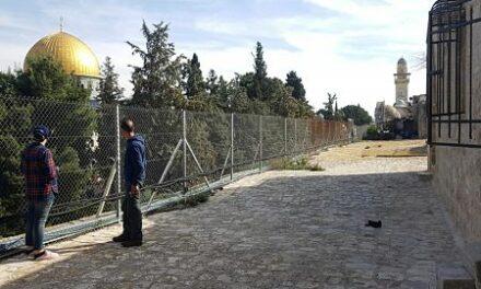 Payer le prix fort pour conserver sa maison près de la Mosquée Al-Aqsa – le calvaire d'une famille palestinienne harcelée par l'occupation israélienne