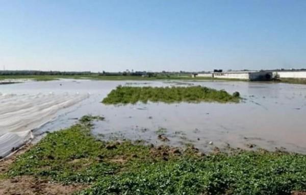 Pour la deuxième journée consécutive les forces d'occupation israéliennes inondent les terres agricoles de Gaza
