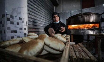 Femme boulangère de Gaza – Femme digne