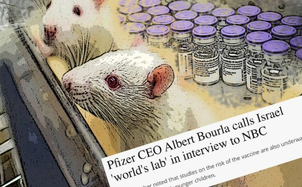 Scoop: le PDG de Pfizer admet qu'Israël est le laboratoire du monde