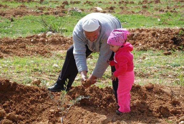 Inscris! Cette terre est palestinienne