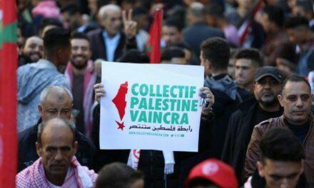 Face aux menaces de dissolution contre le Collectif Palestine Vaincra, de très nombreuses organisations affirment leur solidarité !