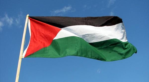 Communication Palestine contre Israël: étape relative à l'admissibilité franchie
