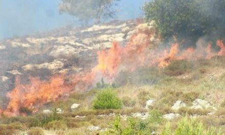 Des colons incendient des terres agricoles au sud de Naplouse