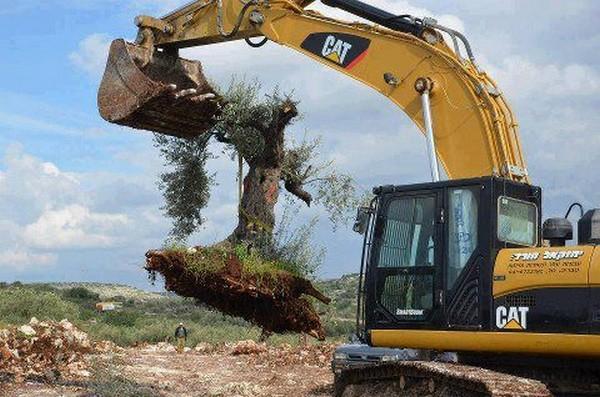 BDS : Les bulldozers vendus à Israël n'ont pas la cote : L'Église méthodiste désinvestit de Caterpillar