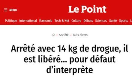 Libéré faute d'interprète : que reste-t-il de la justice française ?