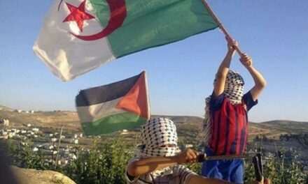 Algérie: Tenir les Palestiniens pour responsables des violences est inacceptable