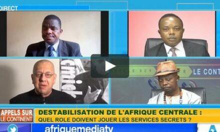 Comment mettre fin à la déstabilisation de l'Afrique centrale
