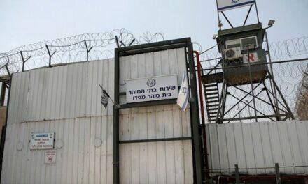 11 prisonniers palestiniens en grève de la faim dans les prisons de l'occupation