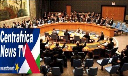 Rapport trafiqué de l'Onu : en RCA, RFI fait encore des siennes contre les FACA