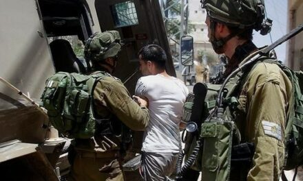 L'occupation a rendu 850 jugements de détention administrative depuis le début de l'année