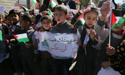 Déclaration de l'ONU : Les enfants de Palestine méritent la sécurité, pas seulement l'éducation