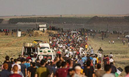 En Direct de Gaza : 52 blessés dont 10 enfants dans la bande de Gaza -bilan provisoire- Ce samedi 21 août 2021