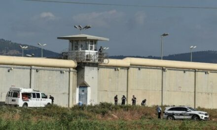 L'évasion des prisonniers palestiniens : un acte de résistance, l'exigence d'une protection internationale