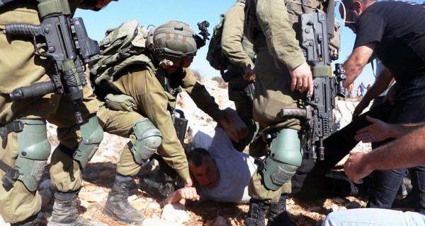Agressions contre la cueillette des olives en Palestine : Mohammed Khatib doit être libéré immédiatement